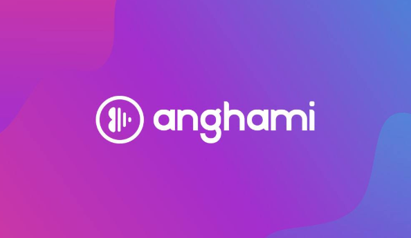 Why Anghami, with over 1m paying users, doesn't feel